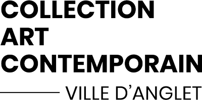 collection art contemporain de la ville d'anglet
